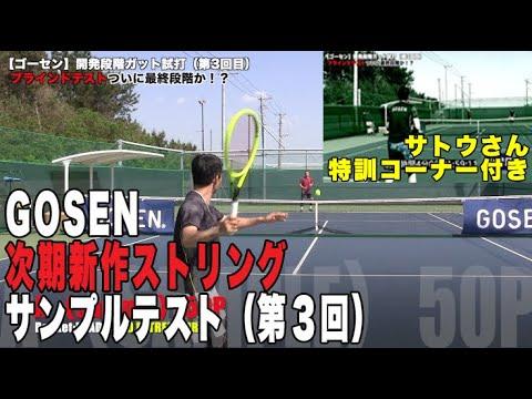 【Fukky'sインプレ】GOSEN新作開発段階サンプルテスト!!(第3回目)